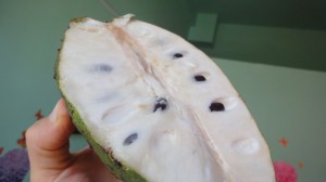 This cultivated cherimoya is much smaller than its wild cousin, the junglesop, and no more sugary.